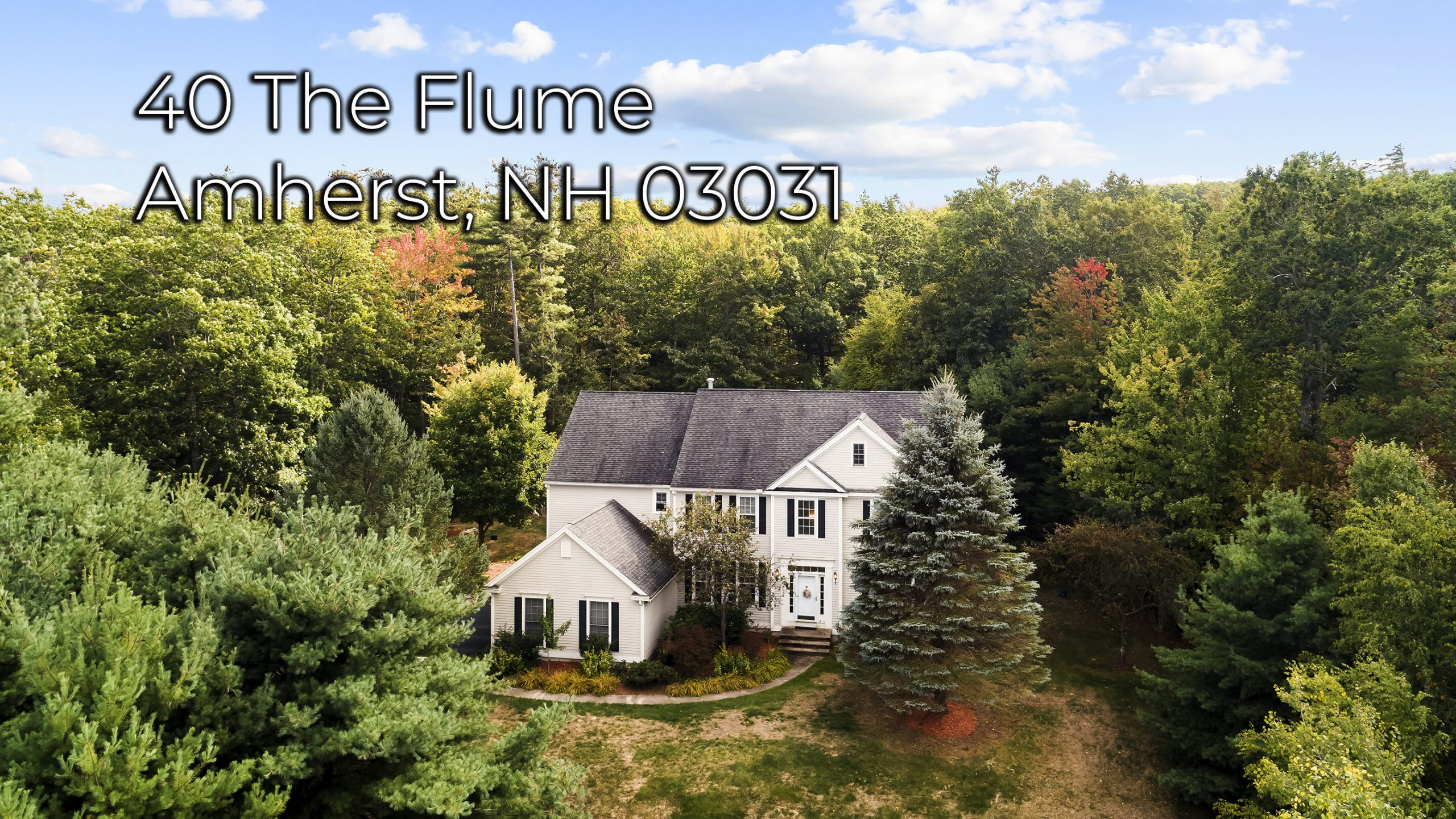 40 The Flume Amherst NH 03031